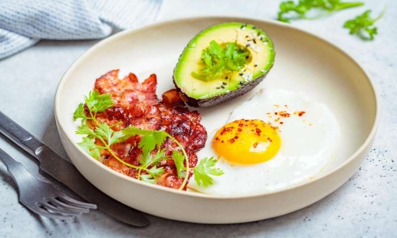 The Ketogenic Diet - cover