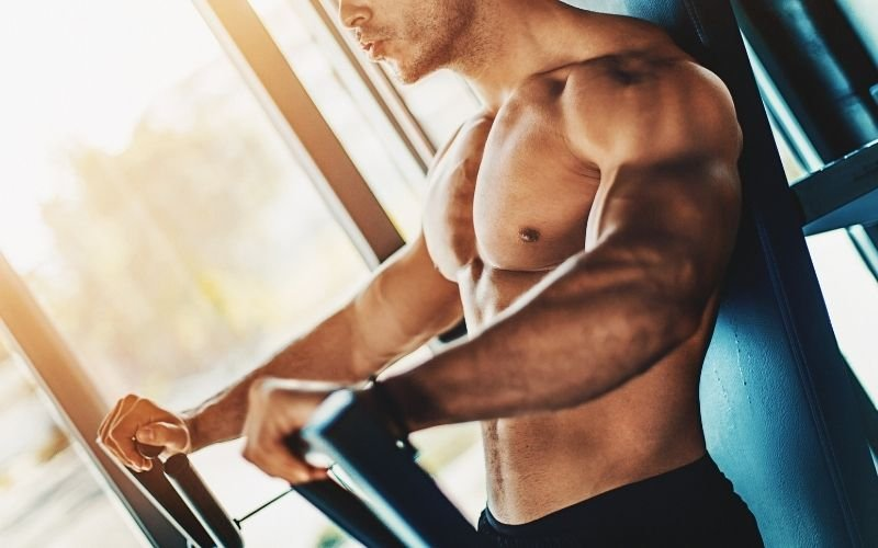 Chest exercises, chest workouts